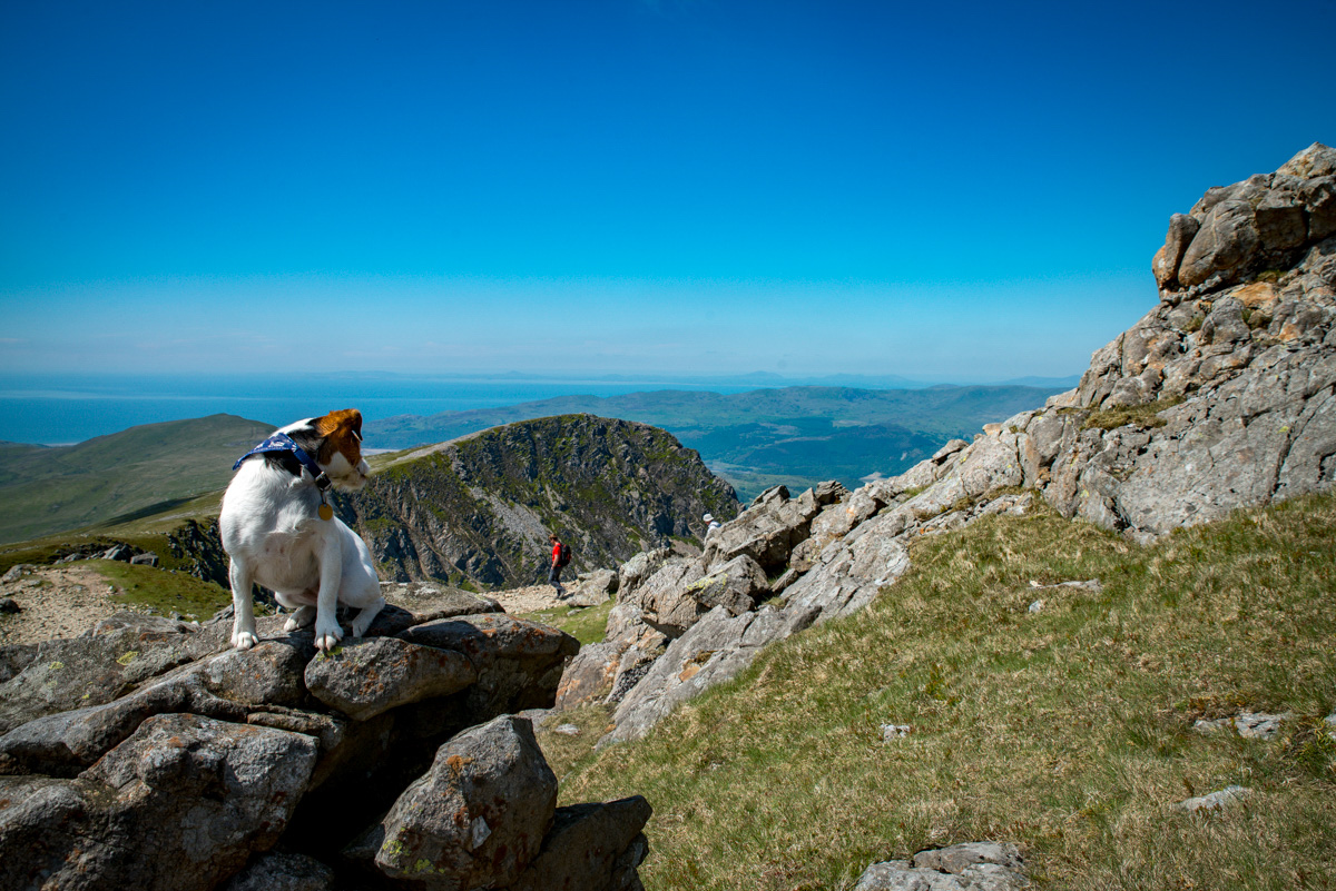 Things To Do In Beddgelert   Snowdonia Information Pack