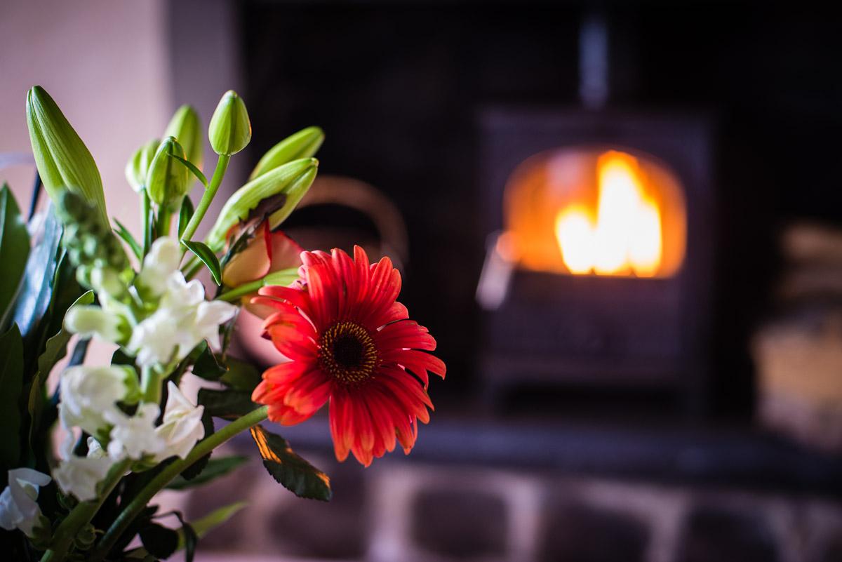 Warming log fire
