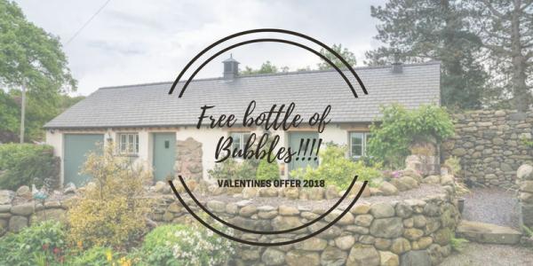 Free Bottle Of Bubbles