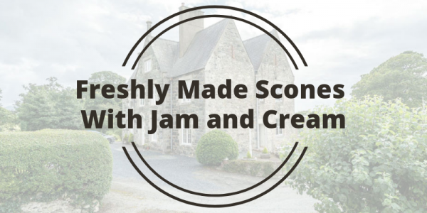 Freshly Made Scones With Jam and Cream