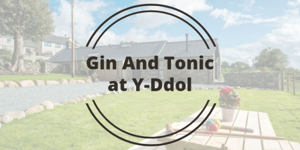 Gin And Tonic at Y-Ddol