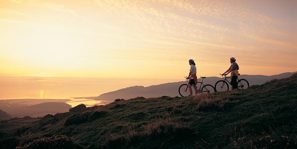 Things To Do In Barmouth | Mawddach Trail