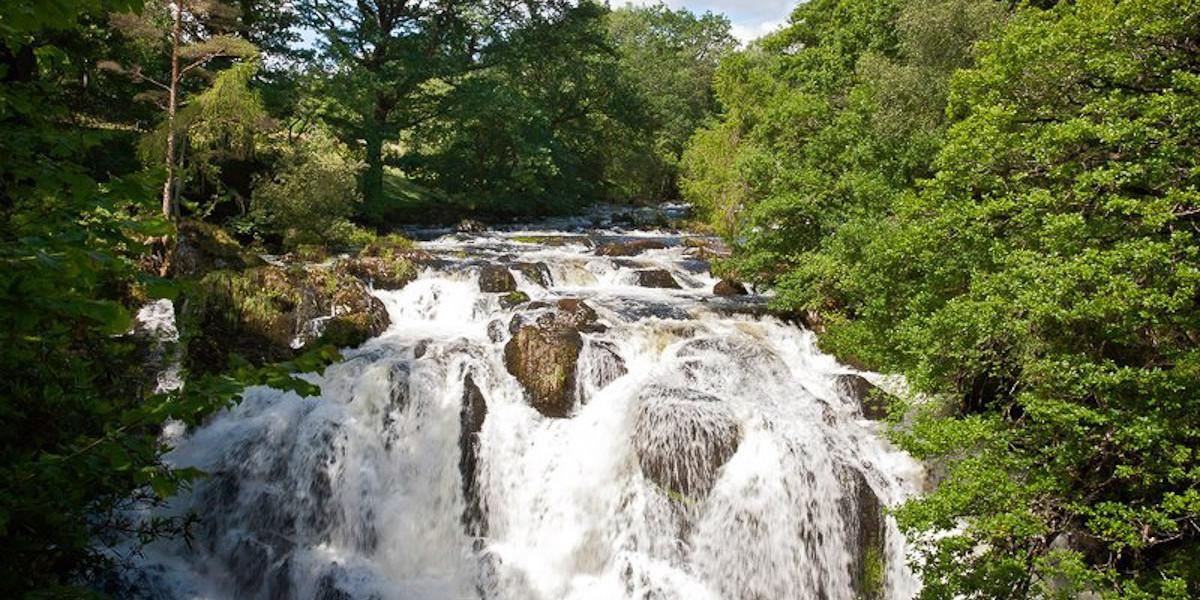 Swallow Falls Rhaeadr EwynnolNear Betws-y-CoedSnowdoniaConwy CountyNorthScenery