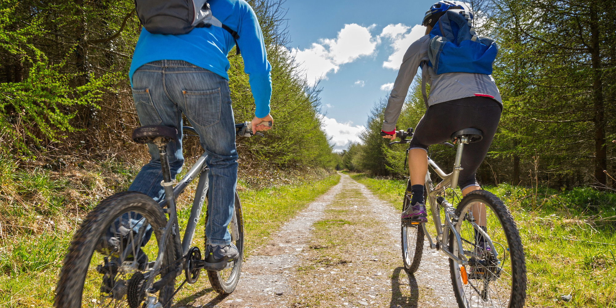 Things to Do This Easter In North Wales | Coed Y Brenin | Mountain Biking