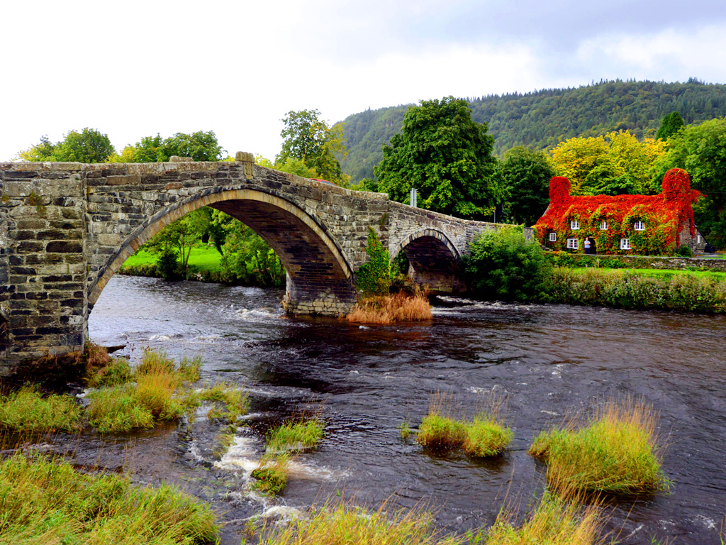 Top 5 Cream Teas In Snowdonia