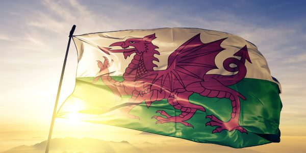 The Legend Of The Red Dragon and the Best Flag Ever