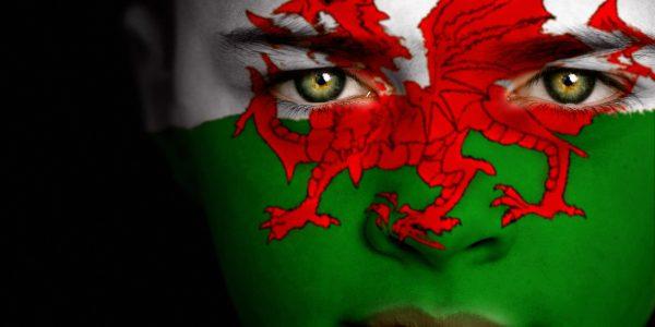 Dwi'n caru Cymraeg – I love Welsh: the reason we all want more Cymraeg